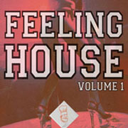 Feeling House - Volume 1